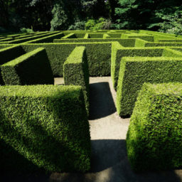 Navigating the Fundraising Maze